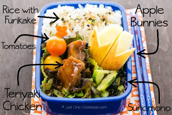 Teriyaki Chicken Bento 2 | Just One Cookbook.com